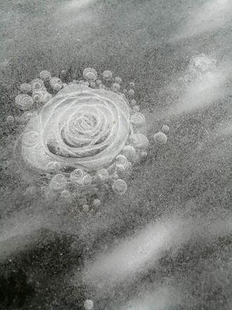 Чудеса уходящей зимы в Нижегородской области - фото 3