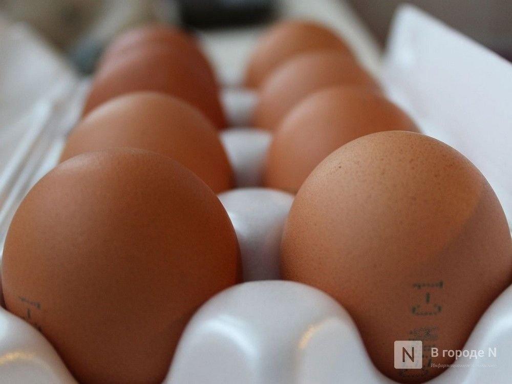 Производство яиц сократилось в Нижегородской области в сентябре - фото 1