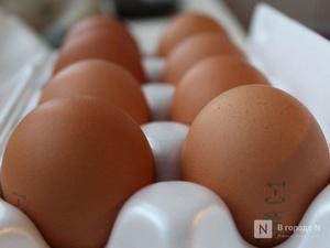 Производство яиц сократилось в Нижегородской области в сентябре