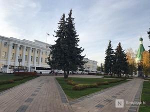 Региональный совет появится в Нижегородской области