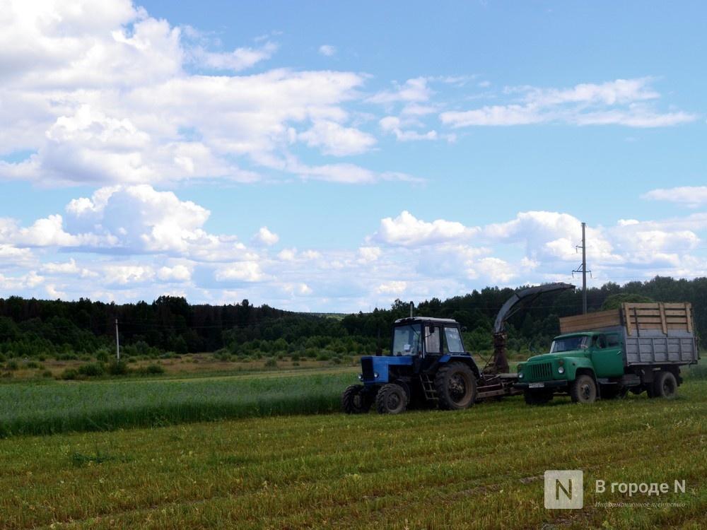 Более 1,8 млрд рублей в виде субсидий получили нижегородские аграрии