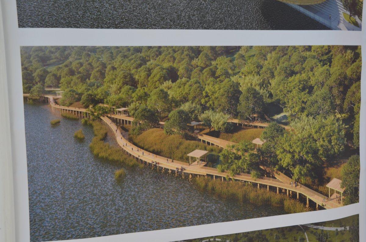 Виталий Мутко поддержал преображение парка «Швейцария» - фото 7