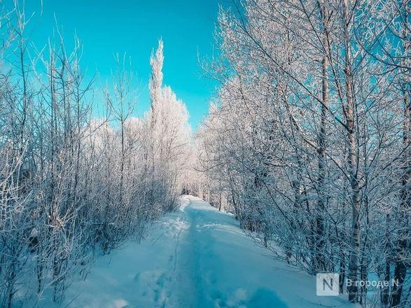 Как Нижний Новгород пережил аномально морозные дни  - фото 3