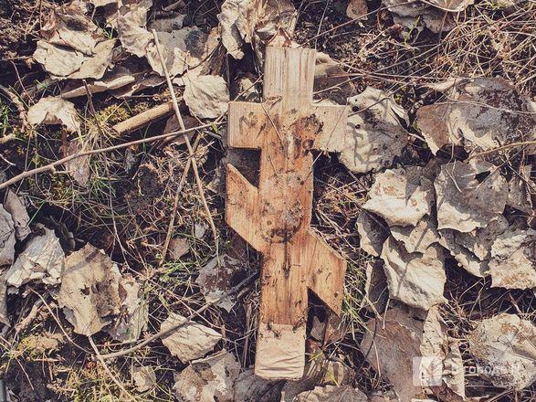 Православный крест над котом: где находится нижегородское кладбище домашних животных - фото 14