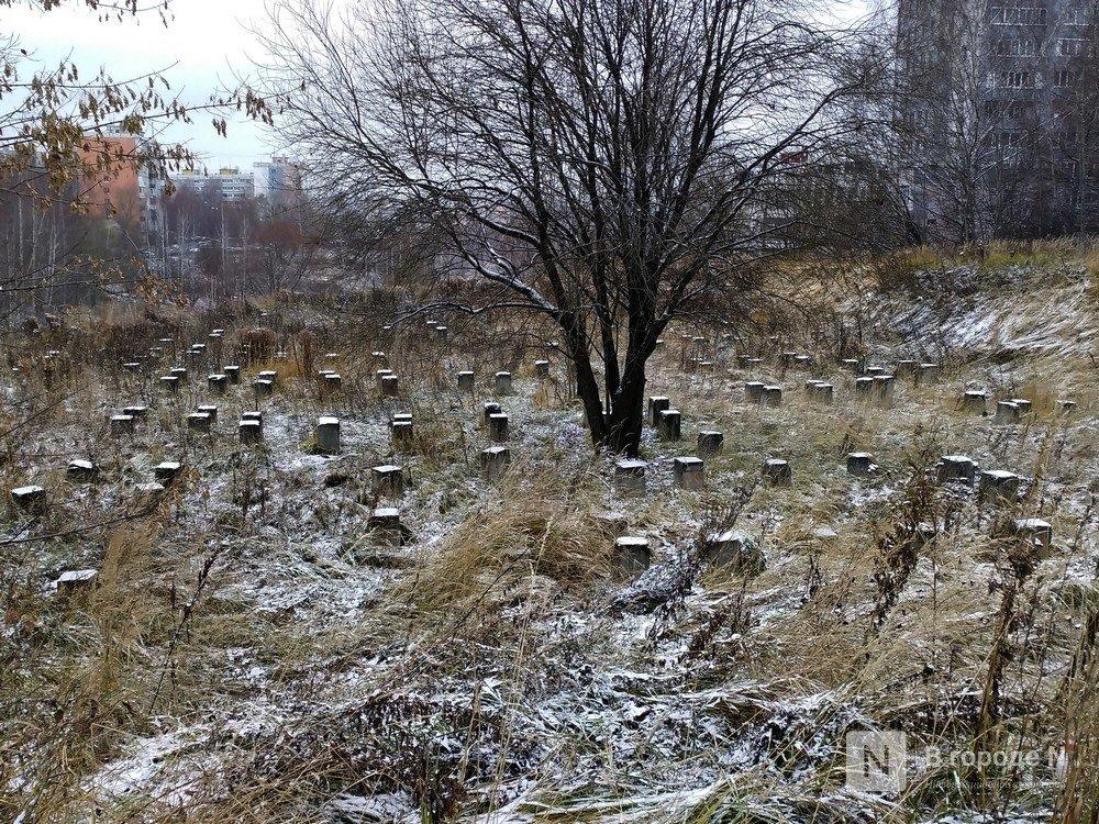 Жителей Нижнего Новгорода приглашают обсудить территории для благоустройства в Верхних Печерах - фото 1