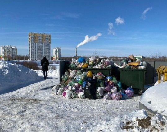 Более 80 нарушений при вывозе мусора выявлено в Нижегородской области - фото 1