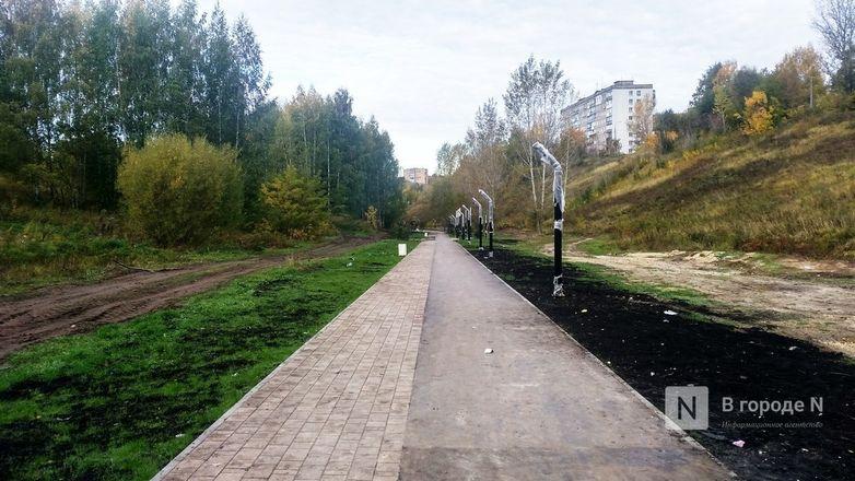 Самолеты, силуэты, яблони: Как преобразился Нижегородский район - фото 73