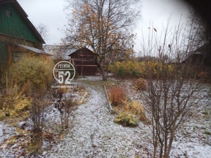 Первый снег выпал в Нижегородской области