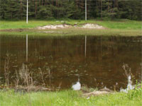Тела двух мужчин и одной женщины извлечены из водоемов в Нижегородской области