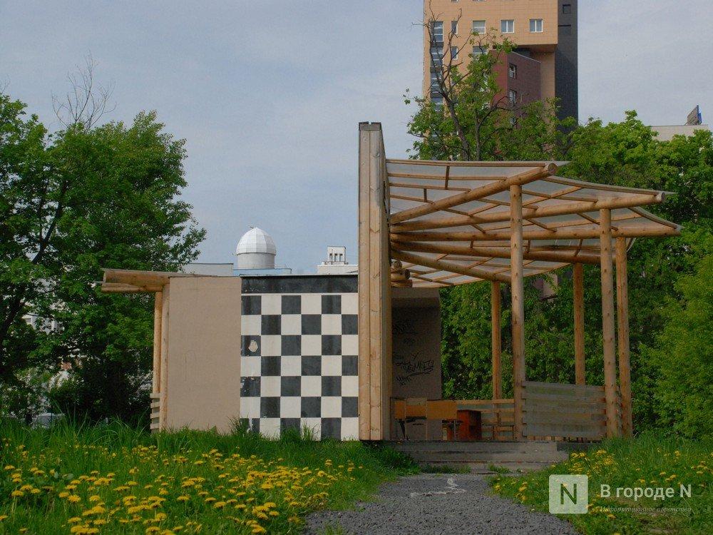 Сухостой и нехватка лавочек: нижегородцы назвали главные проблемы парка Кулибина - фото 5