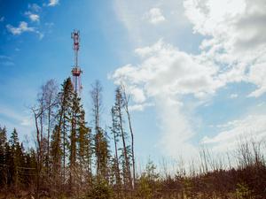 Tele2 развивает 4G-интернет в Сибири
