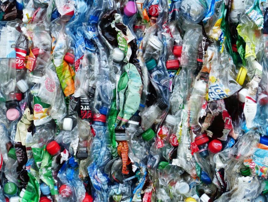 Экологический фрилансер: как заработать на мусоре и сохранить природу - фото 2
