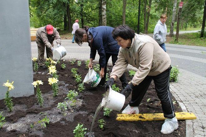 Более 500 цветов посадили в парке «Дубки» - фото 3