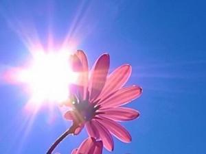 Аномальная жара до +31°С придет в Нижегородскую область