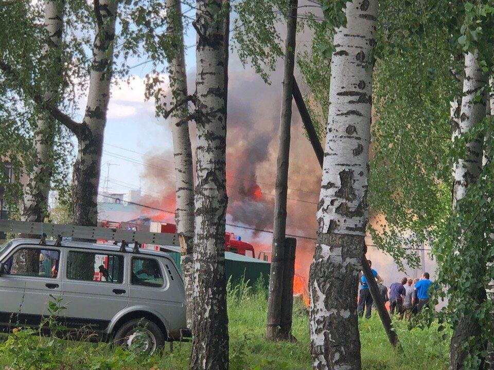 Сарайный массив загорелся в Богородском районе - фото 1