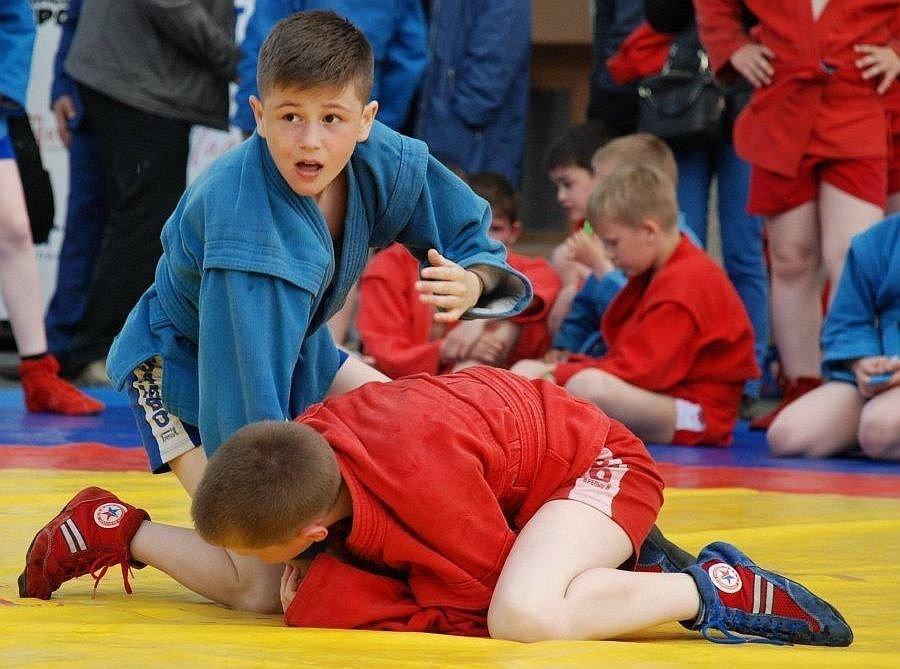 Нижегородские депутаты намерены добиваться выделения участка под спортплощадку для школы самбо - фото 1