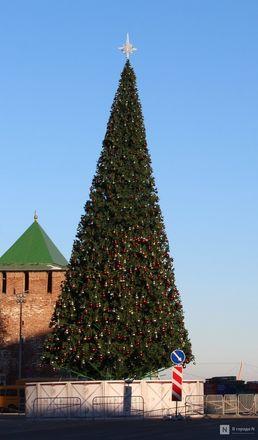 Главную городскую елку нарядили в Нижнем Новгороде - фото 4